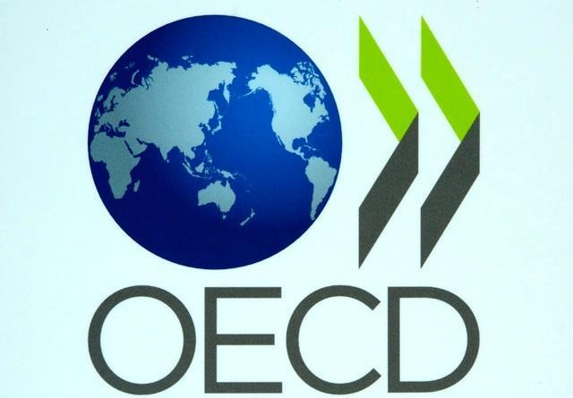 Организация экономического развития и сотрудничества реферат 314