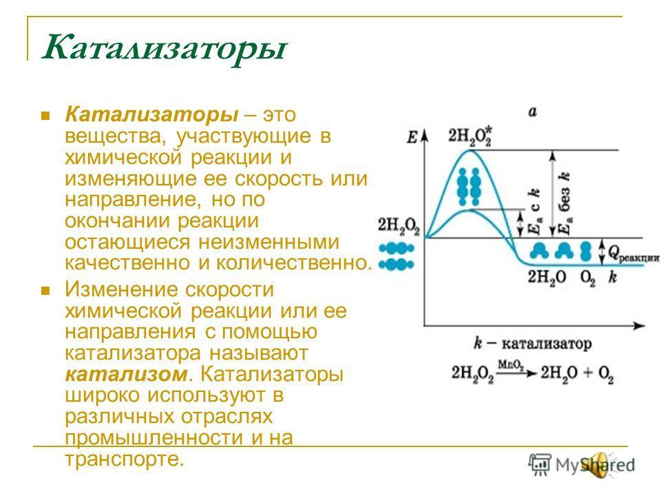 Реферат на тему катализаторы и ингибиторы 9897
