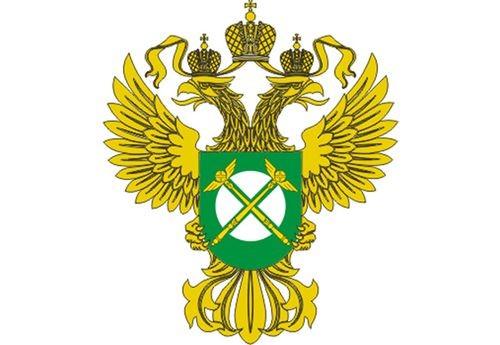 Федеральная антимонопольная служба российской федерации реферат 5479